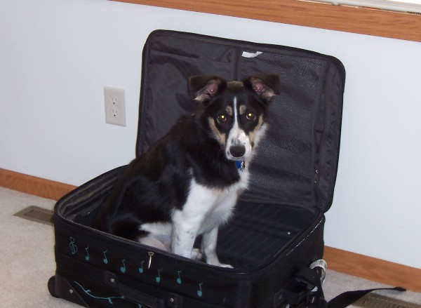 /media/images/baxter-suitcase.jpg